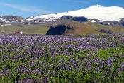 Snaefells-Jokull-Gletscher mit Ingjaldshoskirka-Kirche