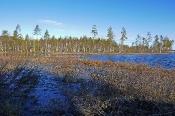 Typische Seen-Landschaft
